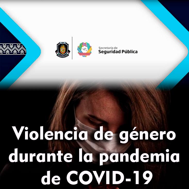 Violencia de género durante la pandemia de COVID-19