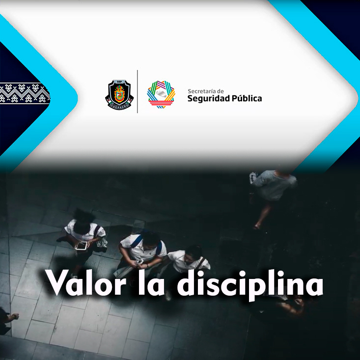 Valor la disciplina