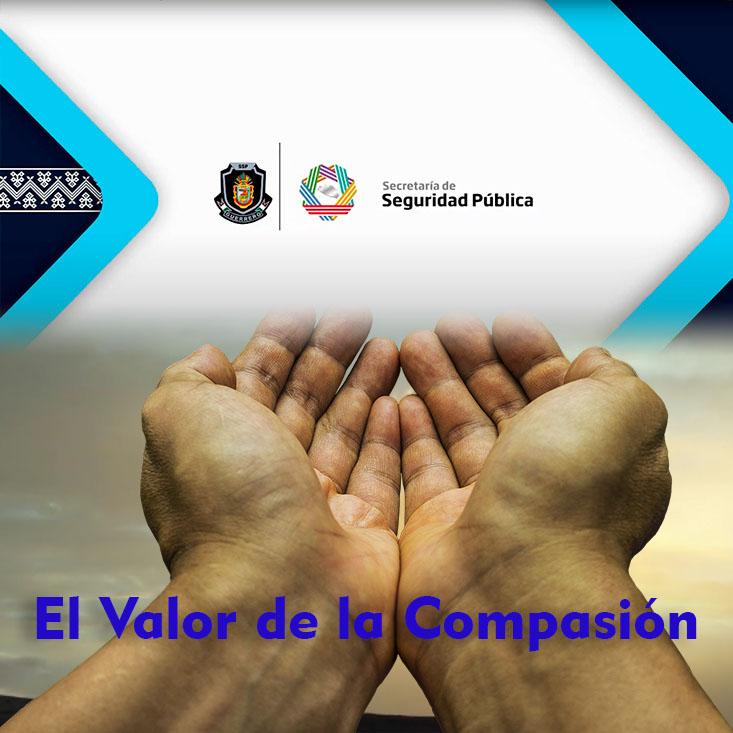 El Valor de la Compasión.